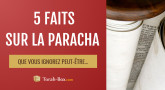 5 faits sur la Paracha Béhaalotékha que vous ignorez (peut-être)