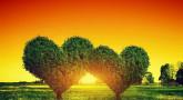 4 conseils pour ne pas souffrir de la négativité de certaines personnes