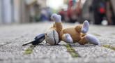 Hachavat Avéda : Restituer des objets perdus (neuvième partie)