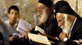 Ki-Tavo : comment recevoir la Torah des Léviim ?