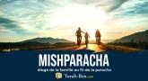 Mishparacha : éloge de la famille au fil de la Paracha – Vaéra