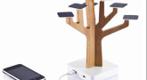 Tou Bichvat - les arbres face à la modernité