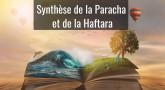 Résumé de la Paracha et de la Haftara de Vayéra