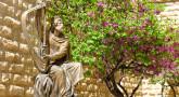 Personnages du Tanakh - David & Mikhal : la pudeur face à l'honneur d'Hachem