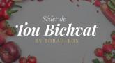 Séder de Tou Bichvat : à imprimer !