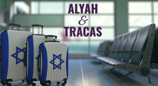Alyah & Tracas : Avi l'imprévisible
