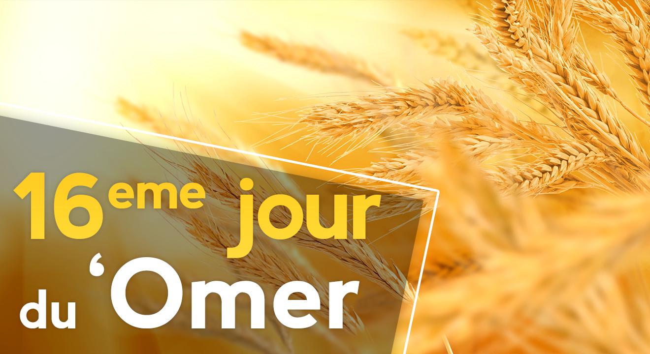 16ème jour du 'Omer du 'Omer