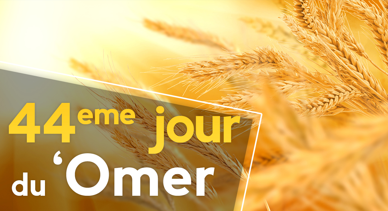44ème jour du 'Omer du 'Omer