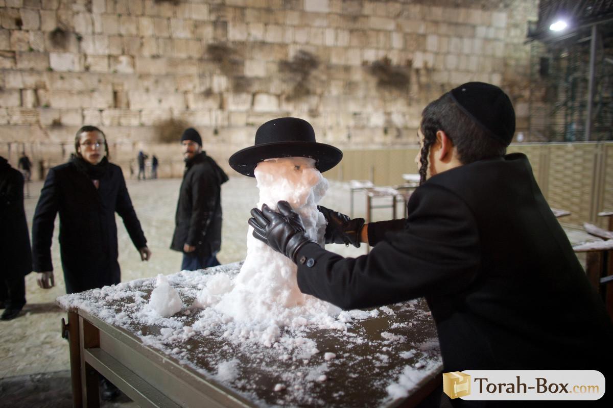смешные еврейские поздравления с новым годом природным цветам клинкерный