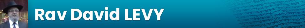 Rav David LEVY