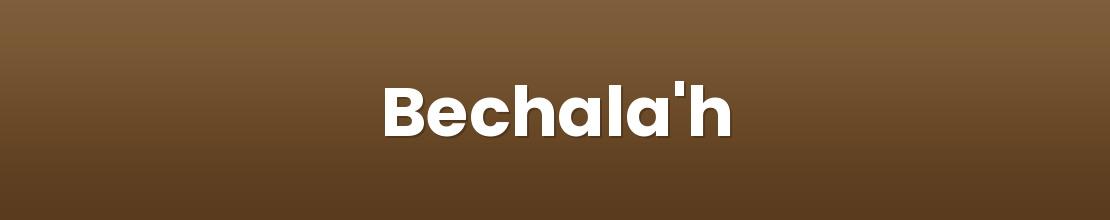 Bechala'h