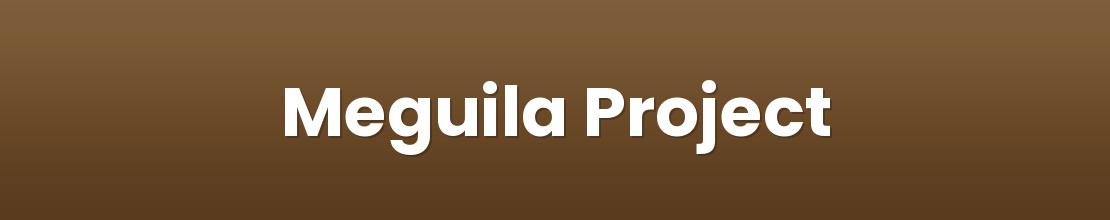 Meguila Project