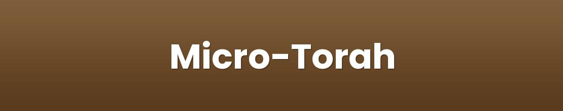 Micro-Torah