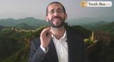 Vision 'Hassidique de Sim'hat Torah