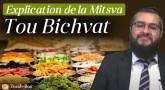 Explication de la Mitsva de Tou Bichvat