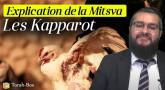 Explication de la Mitsva : la coutume des Kapparot