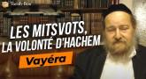 Le Message de la Paracha - Vayéra : Les Mitsvot ? la volonté d'Hachem !