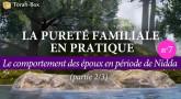 La Pureté Familiale en pratique (n°7) - Le comportement des époux en période de Nidda (partie 2/3)