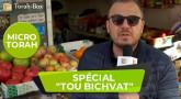 "Micro-Torah spécial ""Tou Bichvat"""
