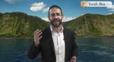 Vision 'Hassidique de la Paracha : Chavouot